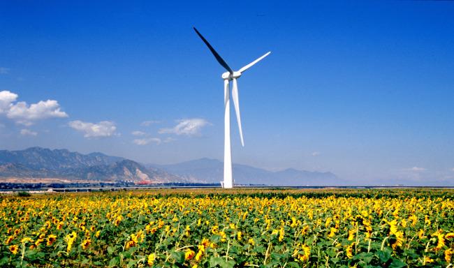 风电场风电项目工程总承包招标文件范本   免费下载