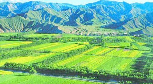 农业综合开发项目土建工程投标书范本