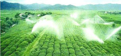 高效节水灌溉工程投标文件  (技术标书范本)