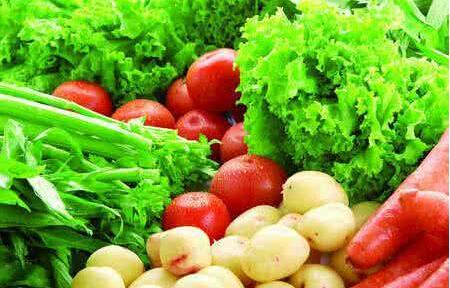 副食品蔬菜水果集中采购投标书范本 (投标文件包含服务方案)
