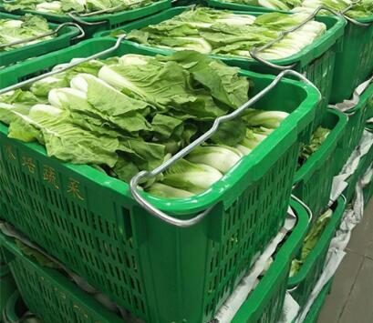 学校食堂蔬菜采购投标书范本