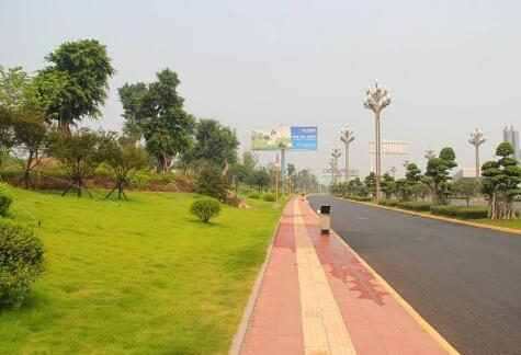 市政道路绿化工程